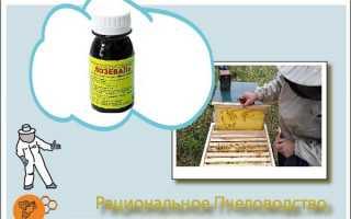 Препарат «Лозеваль» в лечении пчел