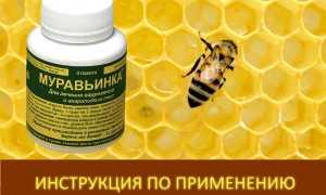 Муравьиная кислота в пчеловодстве