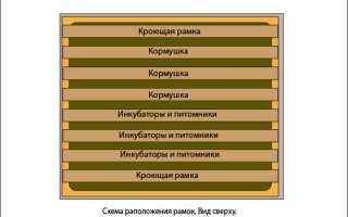 Рамки для ульев: модели, характеристики,  размеры