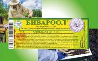 Как использовать Бивароол в борьбе с паразитами