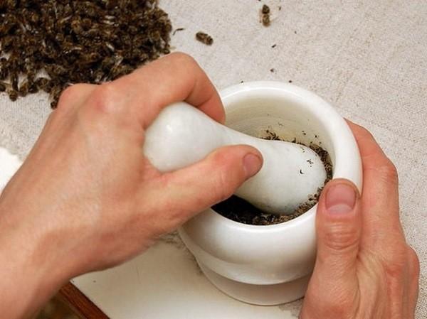 измельчить пчелиный подмор в ступке
