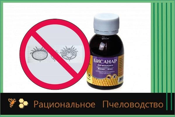 бисанар препарат против клеща