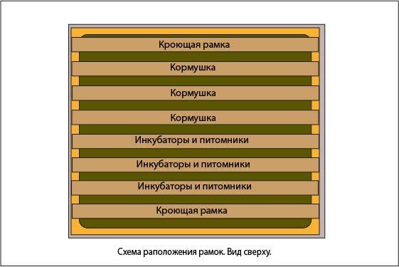 схема расположения рамок