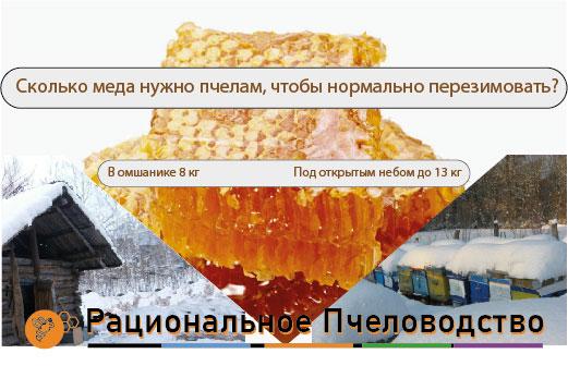 сколько меда оставлять на зиму
