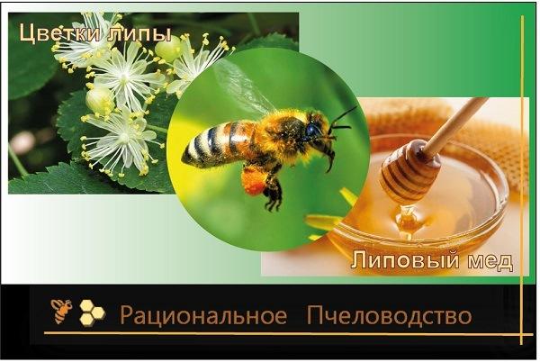 как пчелы опыляют растения